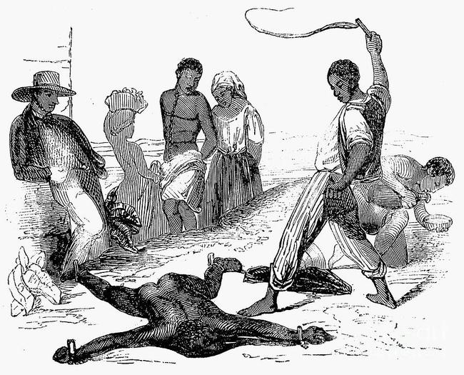 在美国,第一个拥有奴隶的人是黑人。