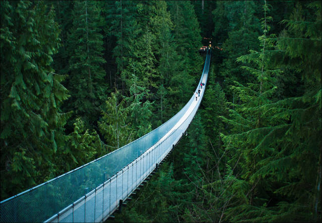 Capilano吊桥,加拿大不列颠哥伦比亚省温哥华
