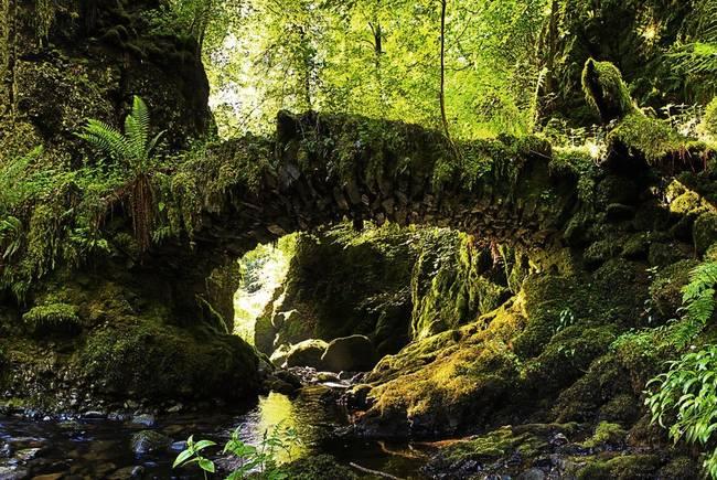 苏格兰童话桥
