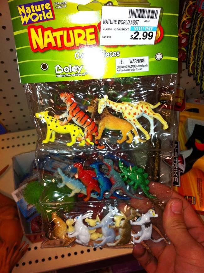 Di alam liar, menurut saya spesies hewan yang berbeda tidak sedekat ini satu sama lain.