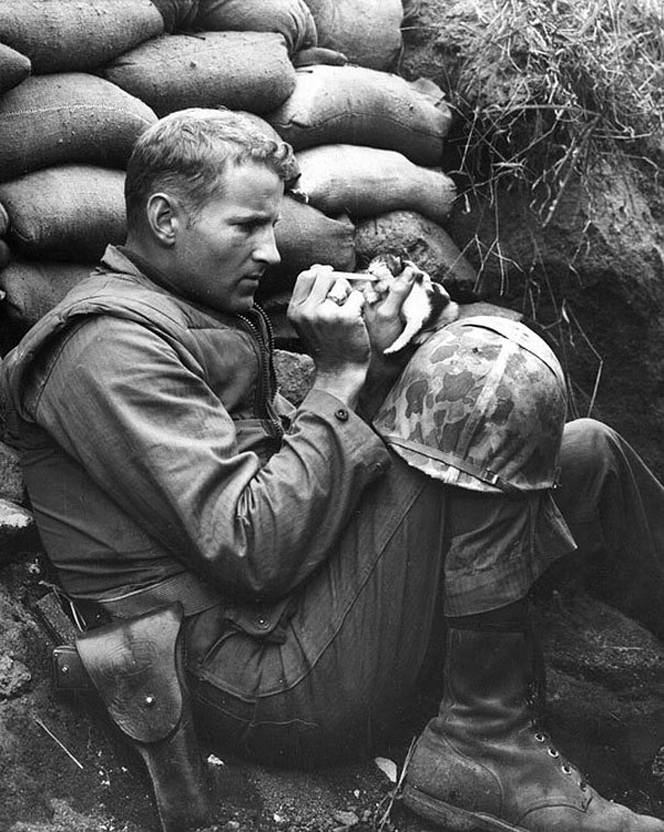 7. When this soldier, in the middle of life or death situations, stopped to take care of a kitty who wandered in the area.