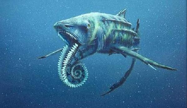 """20.)Helicoprion:也被称为""""螺旋锯"""",这种鲨鱼状的软骨鱼出现在石炭纪晚期。 它存在的唯一证据是三角形牙齿的卷曲线圈。 一些科学家认为它是用来磨碎贝壳的,而另一些科学家则认为它是一种武器。"""