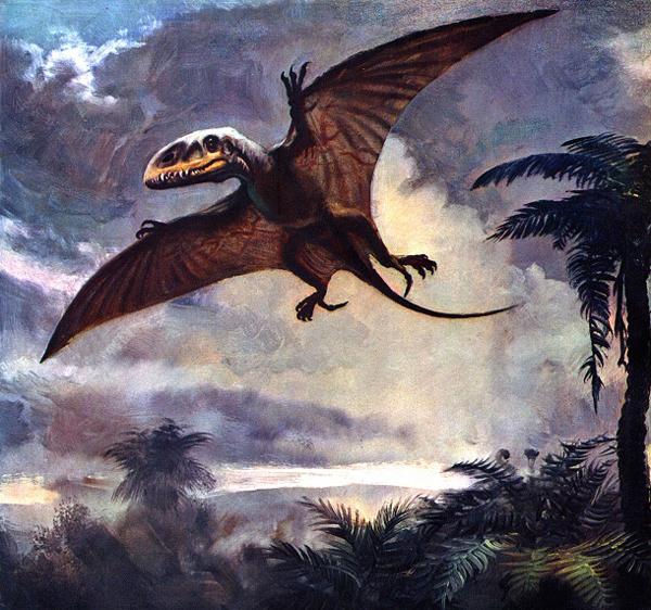 14.)畸齿龙:这种飞行的生物在其下颚有两种不同类型的牙齿。 它有很好的视力和巨大的狩猎爪。