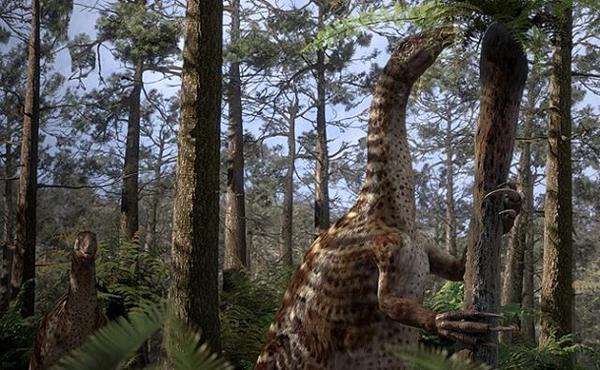 """10.)Therizinosauridae:或""""收割蜥蜴"""",可能在蒙古,中国和美国发现。 由于它们的脖子长,肚子鼓,四趾脚和嘴巴喙,科学家不确定它们的部位是属于一种还是多种。"""