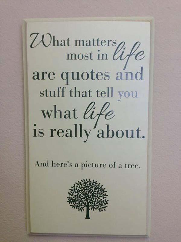 5.) Nice tree.